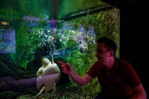 Aquarium de la Porte Doree
